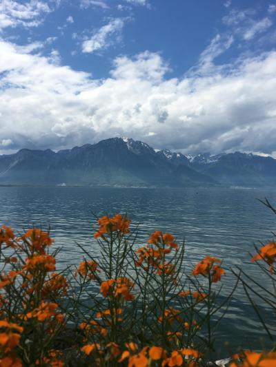 スイスとアルザス、ドイツ、マイナウ島8日間(byクラブツーリズム)④