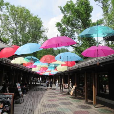 軽井沢で2つの外資系ホテル:ヒルトンキュリオでランチ、マリオットで温泉