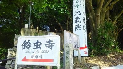 鈴虫寺 (華厳寺) 京都市西京区