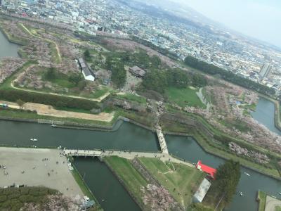 GW桜を観に北海道へ~函館編~