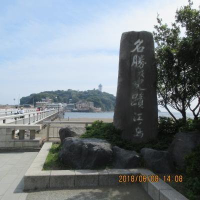 湘南:江の島に夏が来る