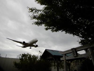 成田空港南端の着陸する飛行機の撮影スポット!今や職質なき東峰神社へ・ド迫力!!飛行機が頭上を飛び越え轟音を鳴り響かせる