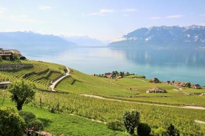 ヨーロッパ新婚旅行(その8)《ジュネーヴ・レマン湖・ラヴォー地区編》