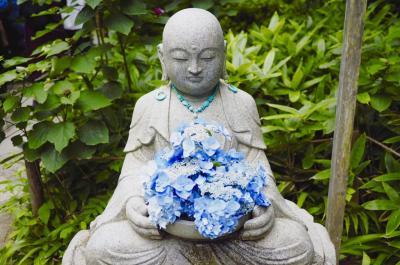 北鎌倉で明月院ブルー時々ネコ