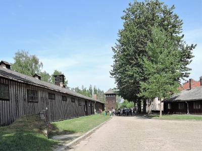 菜の花畑と新緑に輝くポーランドの世界遺産を巡る8日間【10】5日目:アウシュビッツ