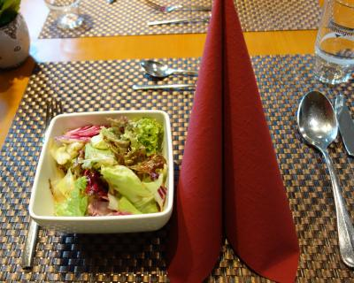 ザルツブルクのお宿は新市街の外れ。夕食もここでいただきました。