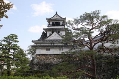 高知オレンジホールで市川海老蔵の源氏物語公演を観た後4度目の高知城登城