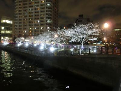 目黒川・五反田辺りの夜桜(2018年3月)