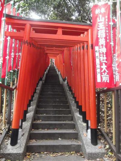 都心の日枝神社,赤坂氷川神社,豊川稲荷東京別院を巡った