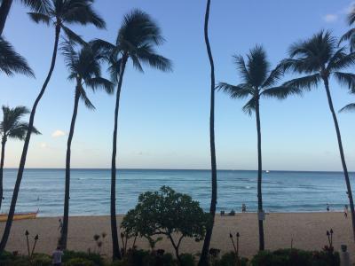 JAL SKY SUITE(プレエコアップグレード)で行くハワイ@リッツカールトン5泊③ー朝からなんとかハワイ満喫ー