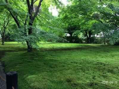 初夏の京都1 大原