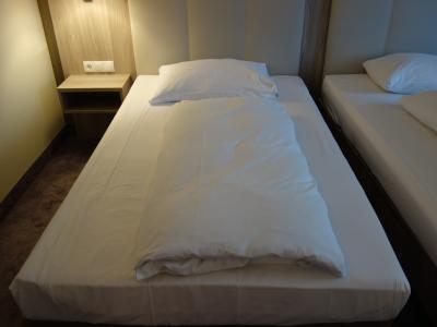 グラーツの宿はイマイチ。枕がぺっしゃんこで枕の役になっていない。