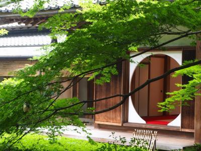 名月院 鎌倉 紫陽寺へ 季節の紫陽花を堪能して来ました!