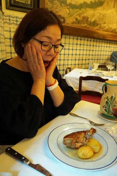 復讐と再挑戦。リベンジ・スペイン(40)ソフィア王妃芸術センターでゲルニカを見た後は世界一古いレストラン・ボティンで子豚を食べる。