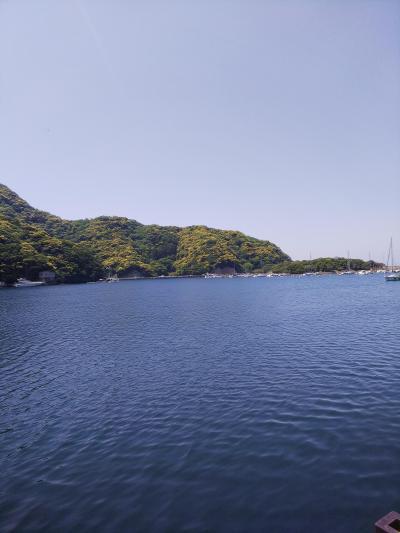伊豆旅行2日目☆西伊豆で釣り&無雙庵枇杷