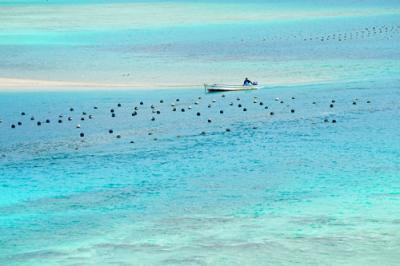 南の島の青い空と海に魅せられて(石垣島編)