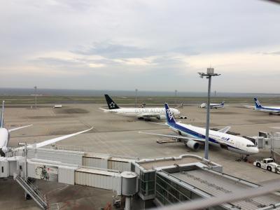 東京から東京への旅行(?)