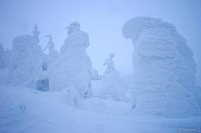 世界が認めた日本の絶景!蔵王樹氷原 with 樹氷幻想回廊ナイトクルージング