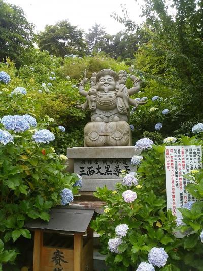 6月29日 見頃を迎えた2万株の紫陽花、千葉県大多喜 麻綿原天拝園