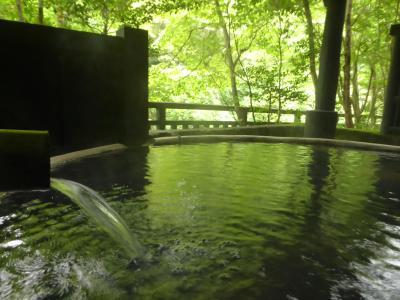 【ANAマイル旅】梅雨の合間に…2~優雅な温泉三昧で至福のひと時…~