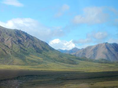 アラスカ2016夏旅行記 【3】デナリ―国立公園2(ウィルダネス・アクセス・センター~トクラット・リバー1)