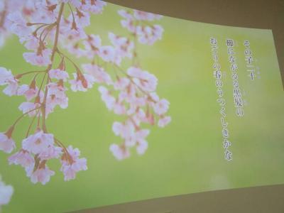 堺観光 ~南宗寺 から さかい利晶の杜~