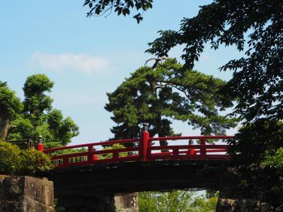 小田原城址公園 紫陽花・菖蒲祭り 開催終了日にやっと!今年は見に出かけられた(#^.^#)