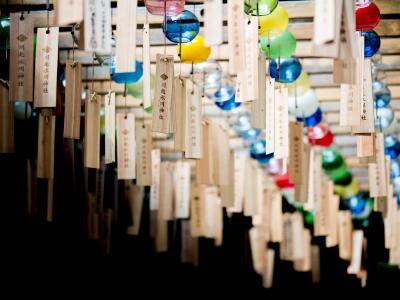 夏の関東 弾丸旅行②埼玉横断(ムーミン谷、川越風鈴祭り、バーバパパカフェ)