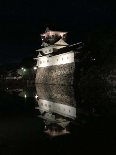 富山にグルメ WITH 次男の部屋様子見!