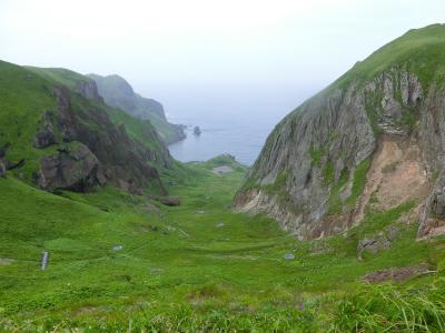 礼文島のお花畑を歩く(標高200mの高山植物たち)