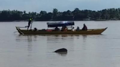カンボジアで川イルカ!
