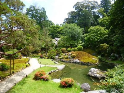 京都・青蓮院 ('16年5月)