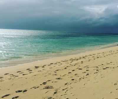 オーストラリア    ケアンズ    グリーン島 ツアー の  真実    2018