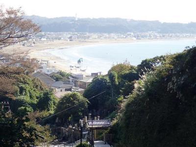 江ノ電に乗って鎌倉散歩(2)成就院~高台からの由比ヶ浜の見晴らしが素敵