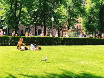 初めてのフィンランド 美しい自然と街に再訪を願って。