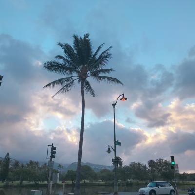 やべり母とやべりの暮らすように旅するハワイ③