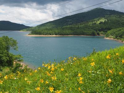 白砂山~八間山 ノゾリキスゲ咲く素敵な稜線ハイク○o。. 野反湖から周回(^^♪