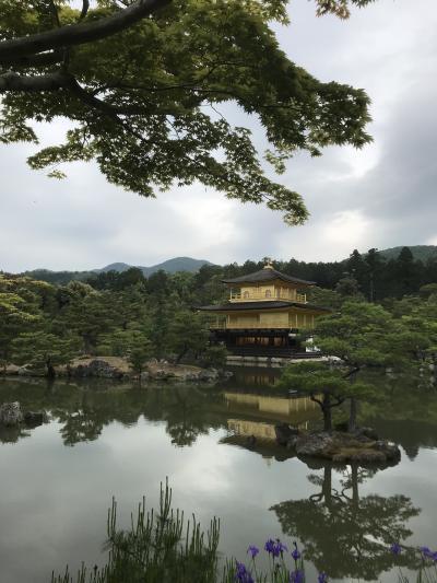 京都へレリゴー