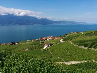 LaLaLa自由に楽しむシニア一人旅 スイス ドイツ ベニス (ジュネーブ)
