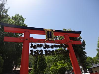 京都 松尾大社へ