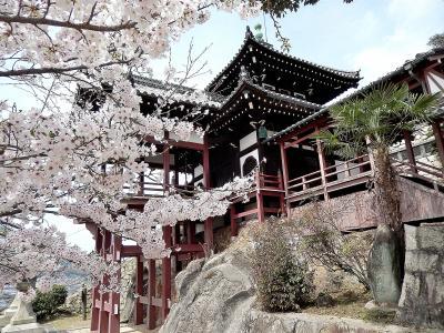 サクラ満開 春爛漫の山陽路 その6 広島市・竹原(前半)