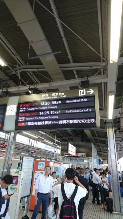 大雨大混乱の最中、東京へ!その1