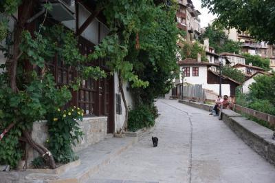 ブルガリア・ルーマニア やさぐれ一人旅 16日間 【その6】ヴェリコ・タルノヴォからアルバナシを訪れる