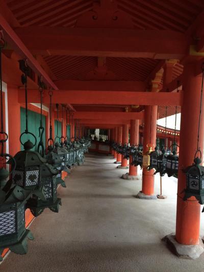 奈良・京都(一日目)