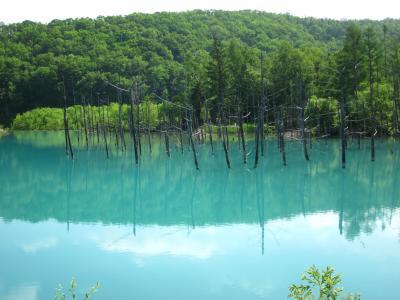 18 新緑の北海道 神秘な青い池から花畑香る富良野エリア ぶらぶら歩き暇つぶしの旅ー3