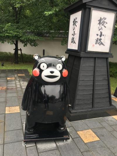 復興の熊本城と周辺の御朱印集め旅