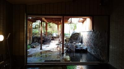 越後湯沢温泉に行きました。「上越妙高~越後湯沢(ゆざわShu*Kura乗車後の旅」(2018.06・松泉閣花月) part2