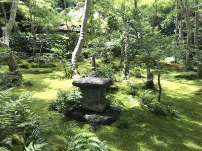 静かな奥嵯峨へ行って来ました