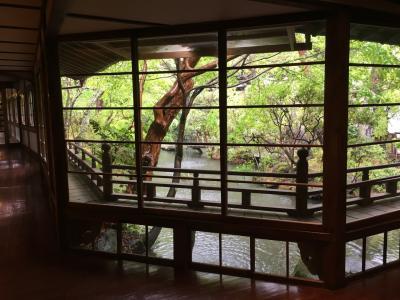 春旅☆富士の牧場&修善寺温泉