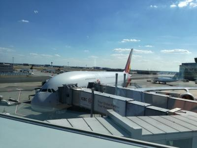 アシアナ!ICN→FRA→MPX(A380ビジネス)